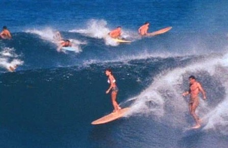 Endless_Summer_group_surf.jpg