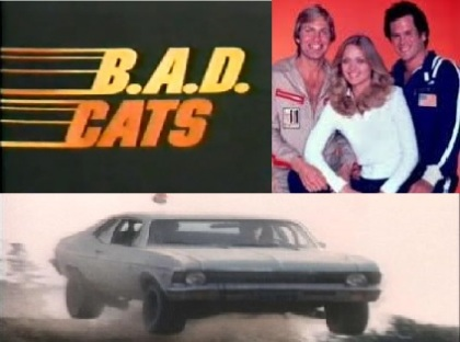 BAD_cats.jpg