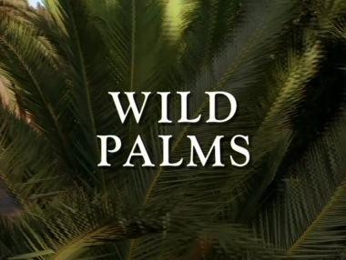 Wild Palms title card.jpg